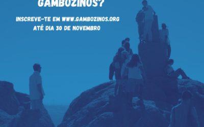 Queres fazer parte dos Gambozinos?