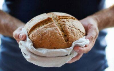 «Eu sou o pão vivo que desceu do Céu»